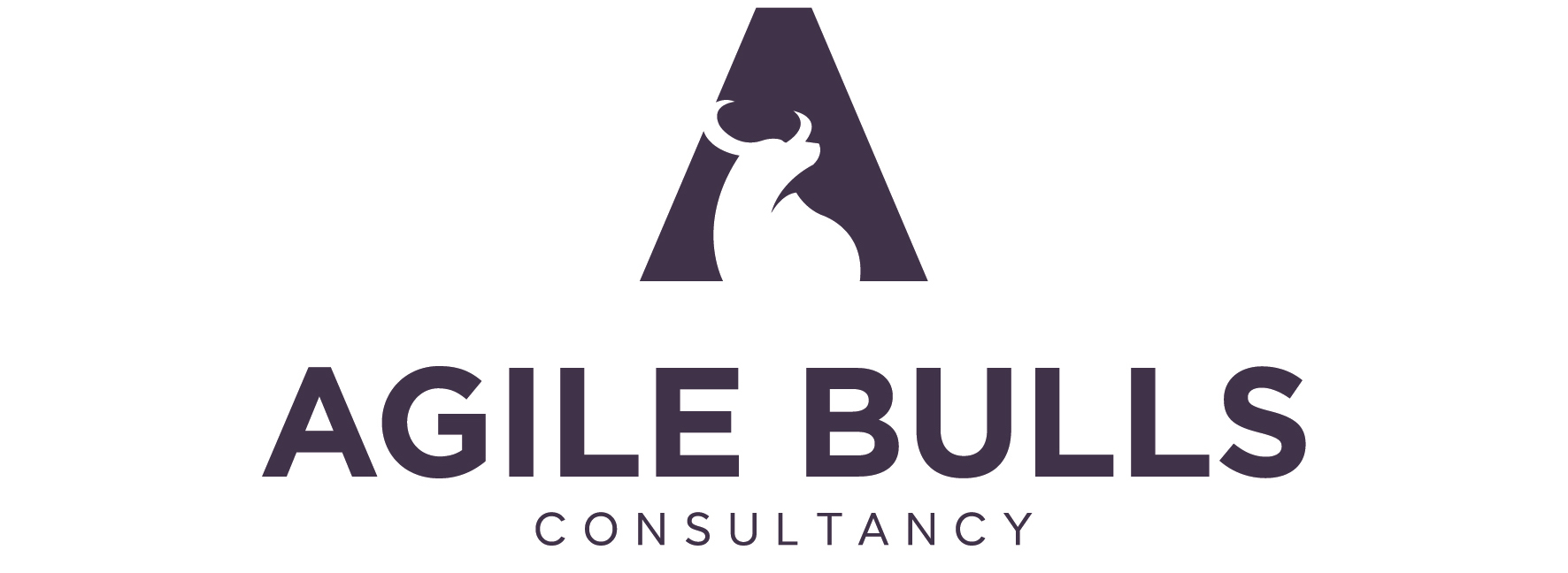 Agile Bulls – Consultancy